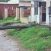 Árboles y postes de luz cayeron con la fuerte tormenta del lunes