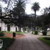 San Pedro: Gran afluencia de turistas