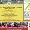 Pergamino: La Rural celebra sus 75 exposiciones