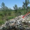 Basuras arrojan residuos