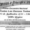 Primer Encuentro Nacional de danzas – Juegos bonaerenses 2016 – Cordón cuneta en barrio 350 viviendas