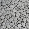 Consejos para restaurar suelos erosionados