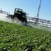 """Agroquímicos: Carbap pide que la Provincia tome """"el toro por las astas"""""""