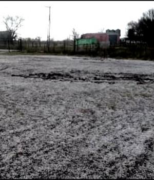 Nieve en Carmen de Areco