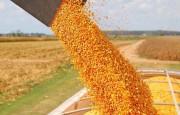 La Mesa de Enlace analiza medidas de fuerza ante el cierre de exportaciones de maíz