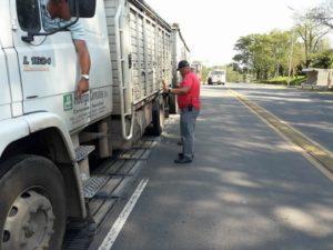 peso camiones